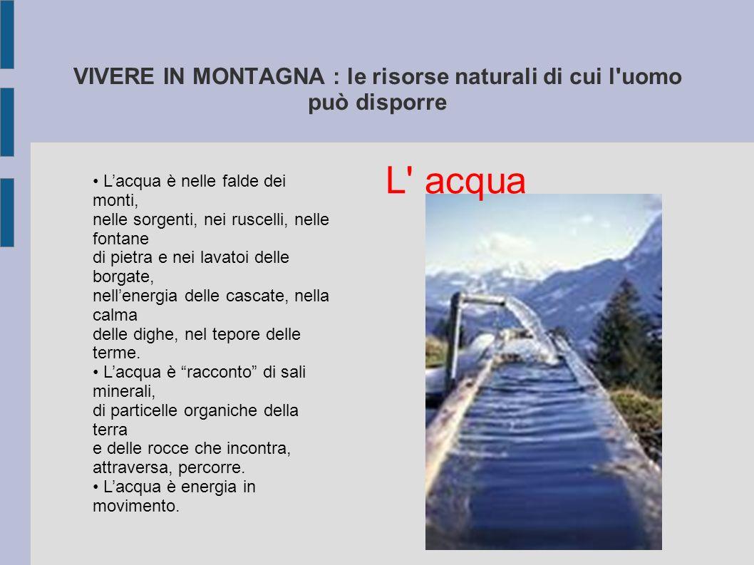 VIVERE IN MONTAGNA : le risorse naturali di cui l'uomo può disporre Lacqua è nelle falde dei monti, nelle sorgenti, nei ruscelli, nelle fontane di pie