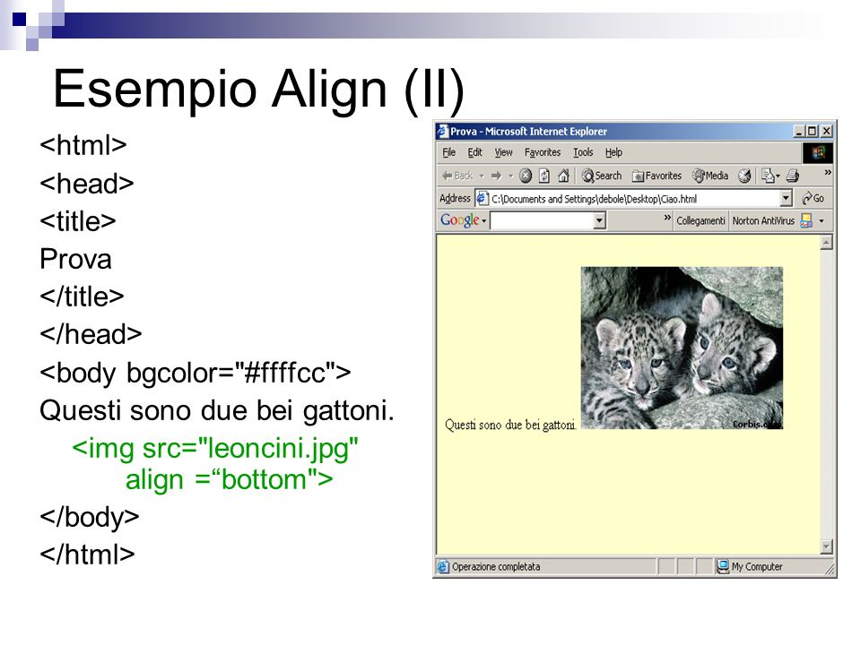 Esempio Align (II) Prova Questi sono due bei gattoni.