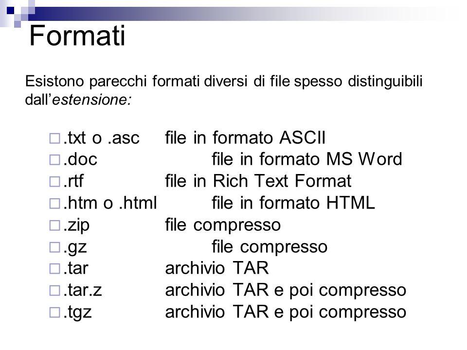Formati Esistono parecchi formati diversi di file spesso distinguibili dallestensione:.txt o.ascfile in formato ASCII.docfile in formato MS Word.rtffile in Rich Text Format.htm o.htmlfile in formato HTML.zip file compresso.gzfile compresso.tararchivio TAR.tar.zarchivio TAR e poi compresso.tgz archivio TAR e poi compresso