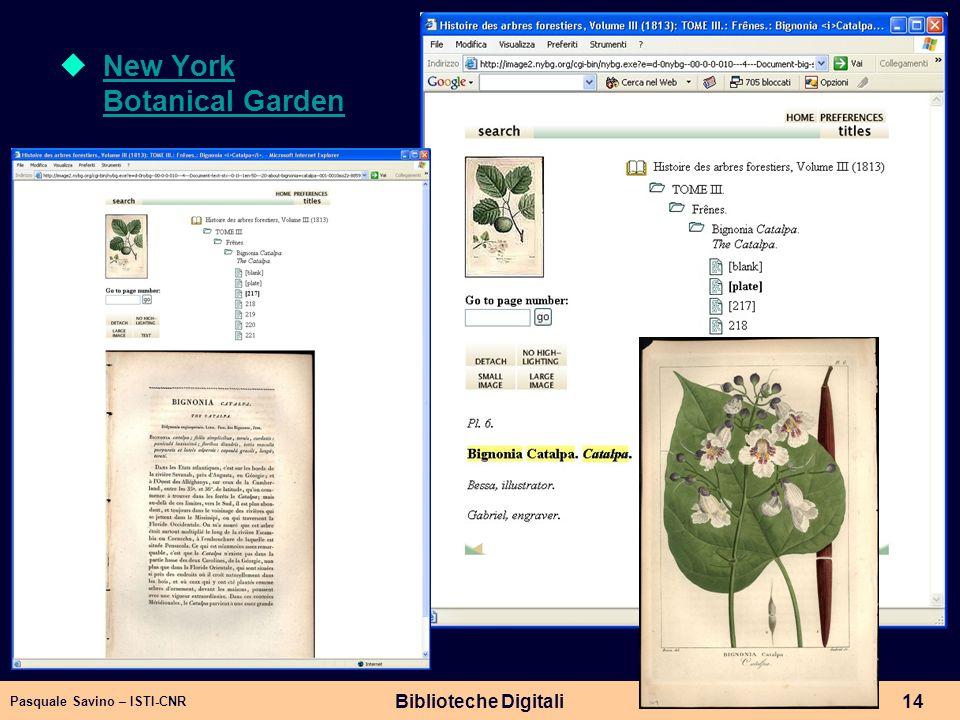 Pasquale Savino – ISTI-CNR Biblioteche Digitali14 New York Botanical Garden New York Botanical Garden