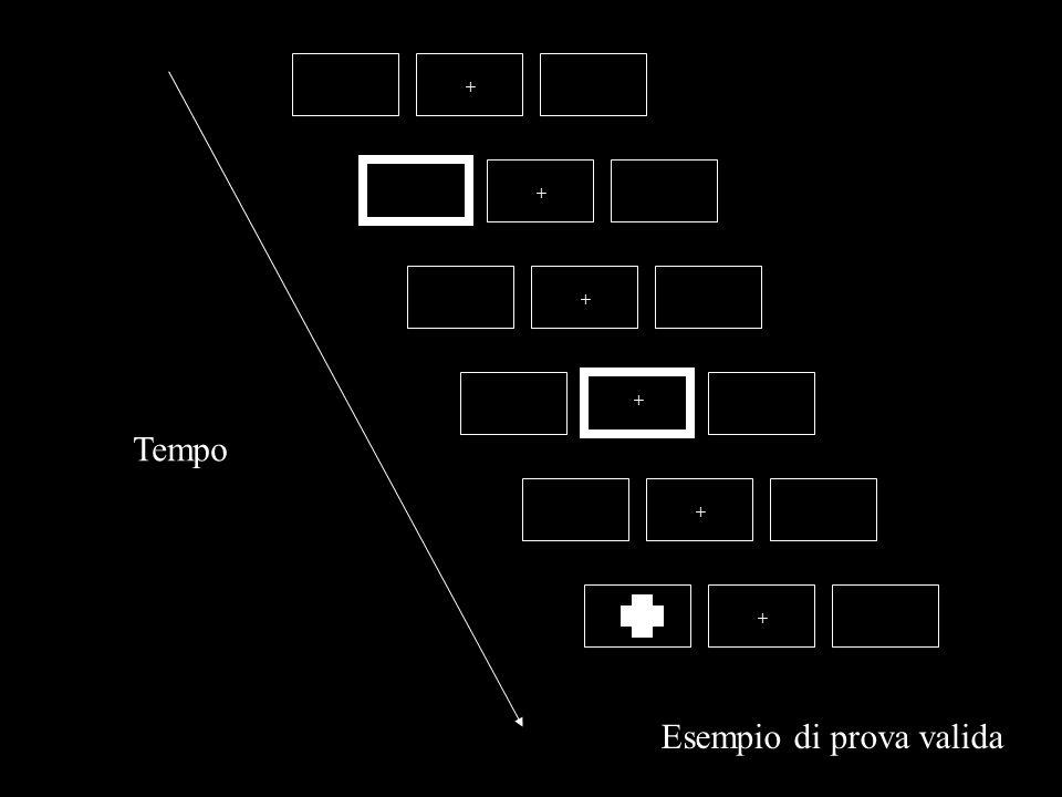 Klein (1988): INIBIZIONE DI RITORNO Tempo +++ + ++ Esempio di prova valida