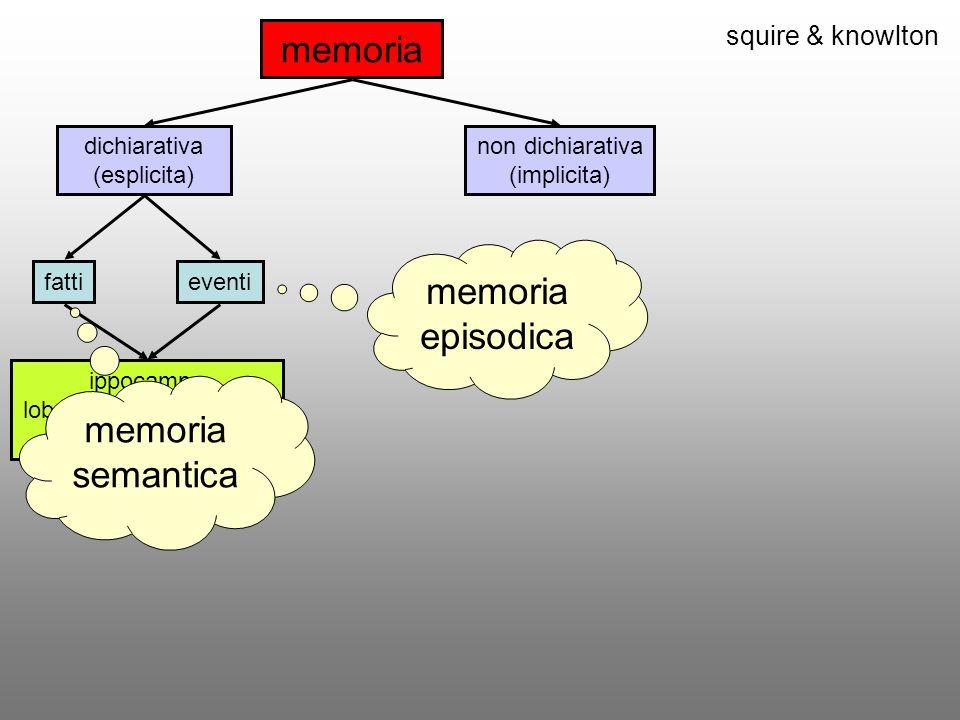 squire & knowlton memoria dichiarativa (esplicita) non dichiarativa (implicita) fattieventi ippocampo lobo temporale mediale diencefalo memoria episodica memoria semantica