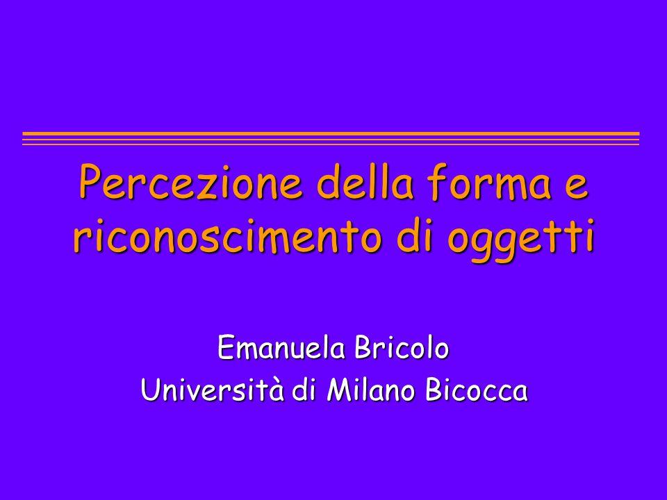 Percezione della forma e riconoscimento di oggetti Emanuela Bricolo Università di Milano Bicocca