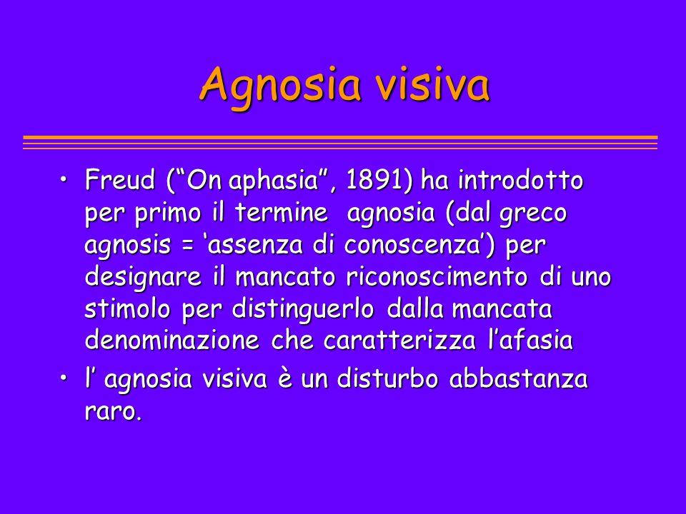Agnosia visiva Freud (On aphasia, 1891) ha introdotto per primo il termine agnosia (dal greco agnosis = assenza di conoscenza) per designare il mancat