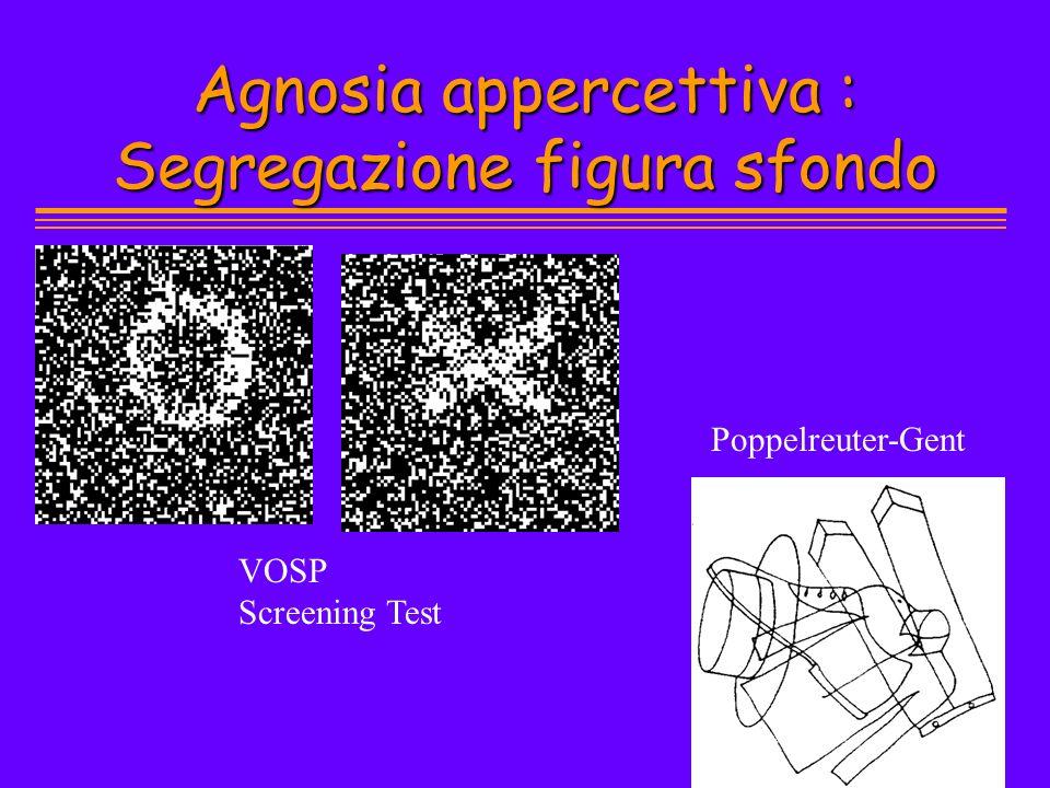 Agnosia appercettiva : Segregazione figura sfondo VOSP Screening Test Poppelreuter-Gent