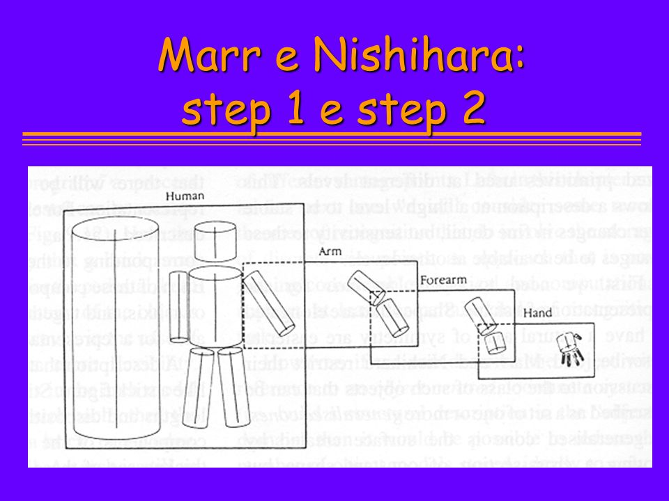 Marr e Nishihara: step 1 e step 2 Marr e Nishihara: step 1 e step 2