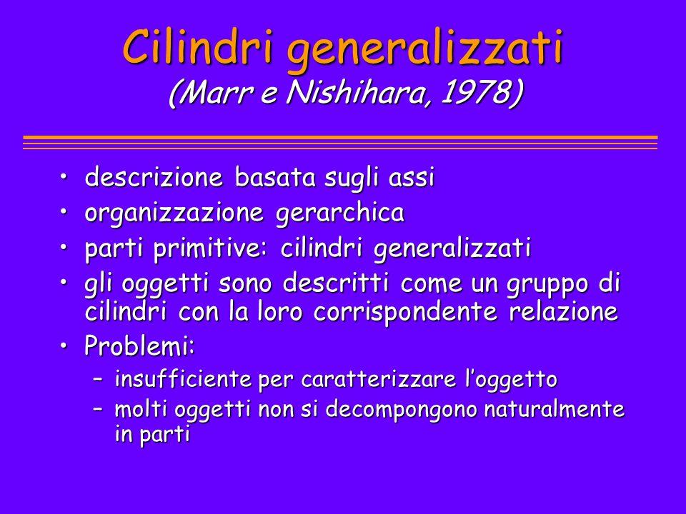 Cilindri generalizzati (Marr e Nishihara, 1978) descrizione basata sugli assidescrizione basata sugli assi organizzazione gerarchicaorganizzazione ger