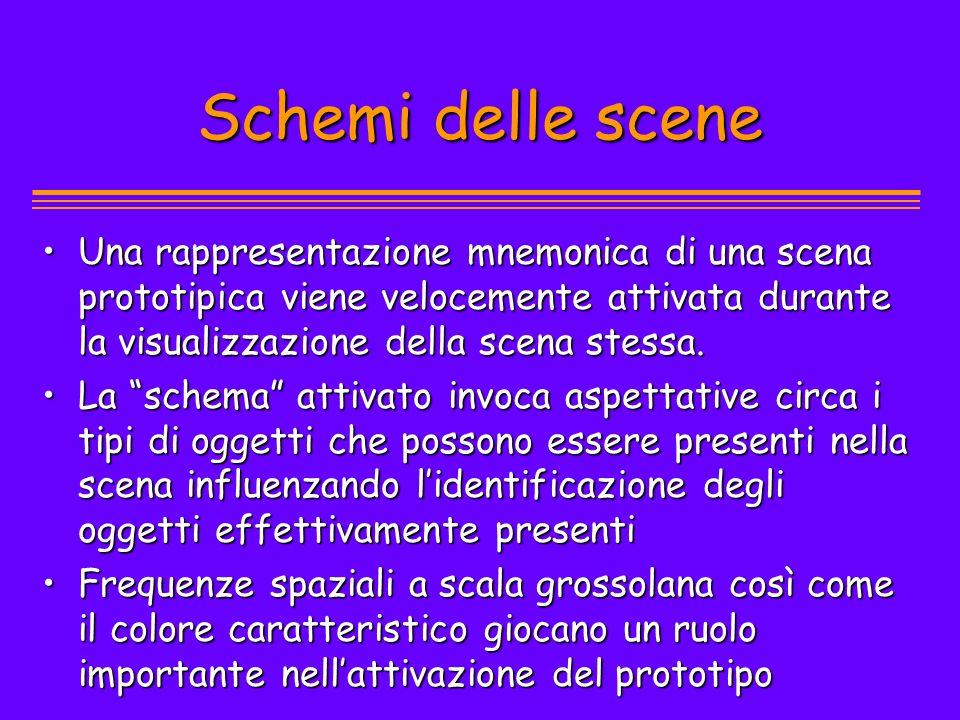 Schemi delle scene Una rappresentazione mnemonica di una scena prototipica viene velocemente attivata durante la visualizzazione della scena stessa.Un