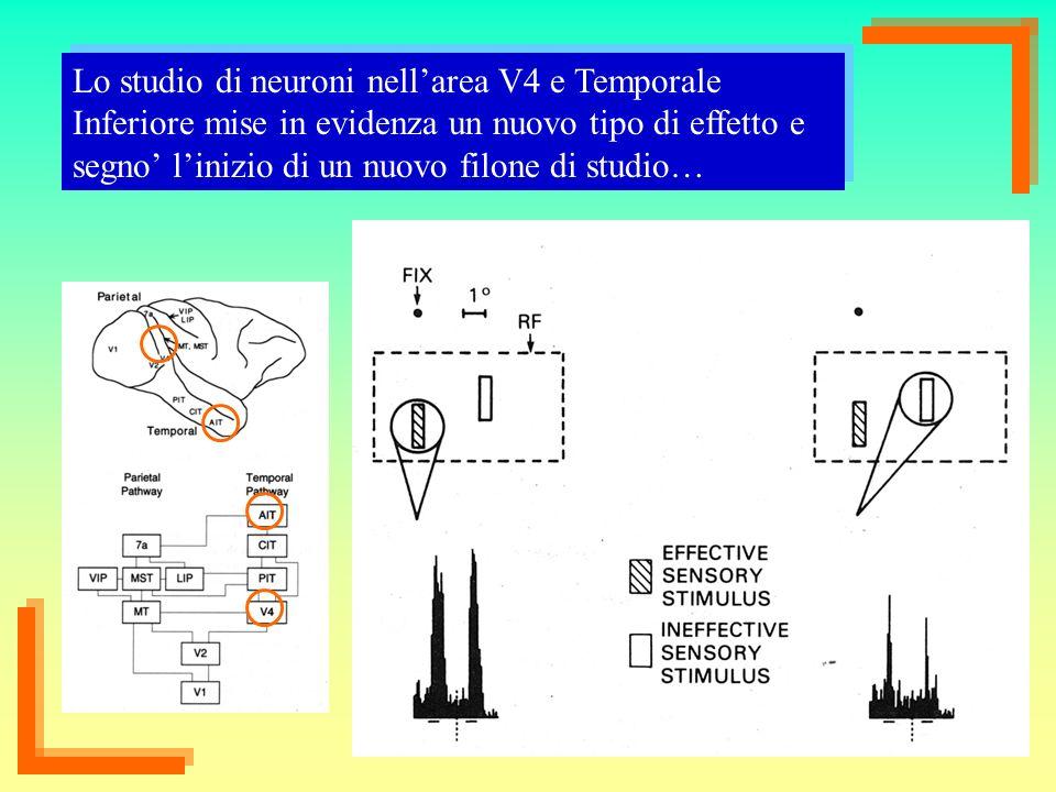 22 Lo studio di neuroni nellarea V4 e Temporale Inferiore mise in evidenza un nuovo tipo di effetto e segno linizio di un nuovo filone di studio…