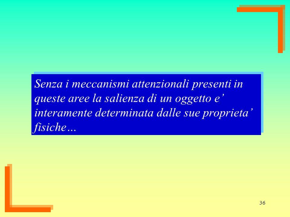 36 Senza i meccanismi attenzionali presenti in queste aree la salienza di un oggetto e interamente determinata dalle sue proprieta fisiche…