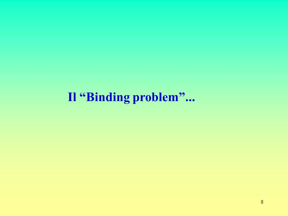8 Il Binding problem...