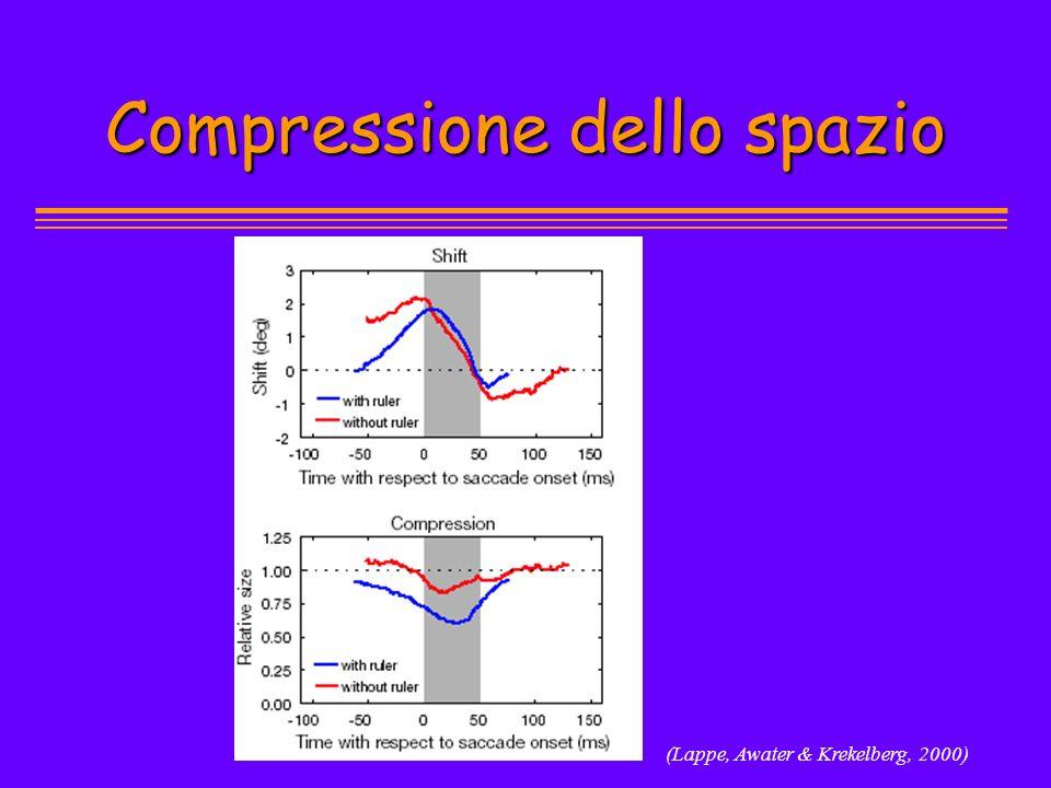 (Lappe, Awater & Krekelberg, 2000) Compressione dello spazio