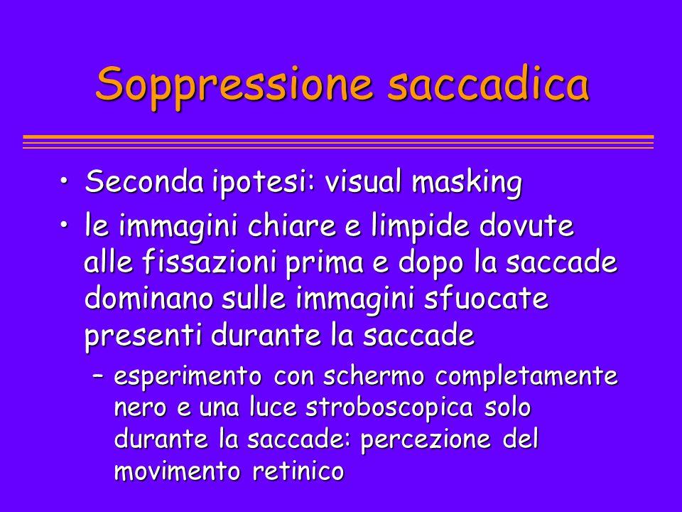 Soppressione saccadica Seconda ipotesi: visual maskingSeconda ipotesi: visual masking le immagini chiare e limpide dovute alle fissazioni prima e dopo