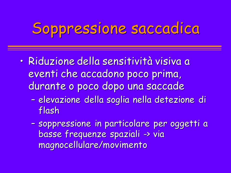 Soppressione saccadica Riduzione della sensitività visiva a eventi che accadono poco prima, durante o poco dopo una saccadeRiduzione della sensitività