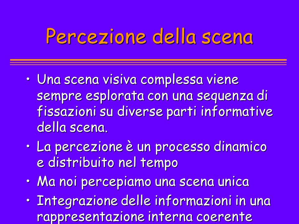 Percezione della scena Una scena visiva complessa viene sempre esplorata con una sequenza di fissazioni su diverse parti informative della scena.Una s