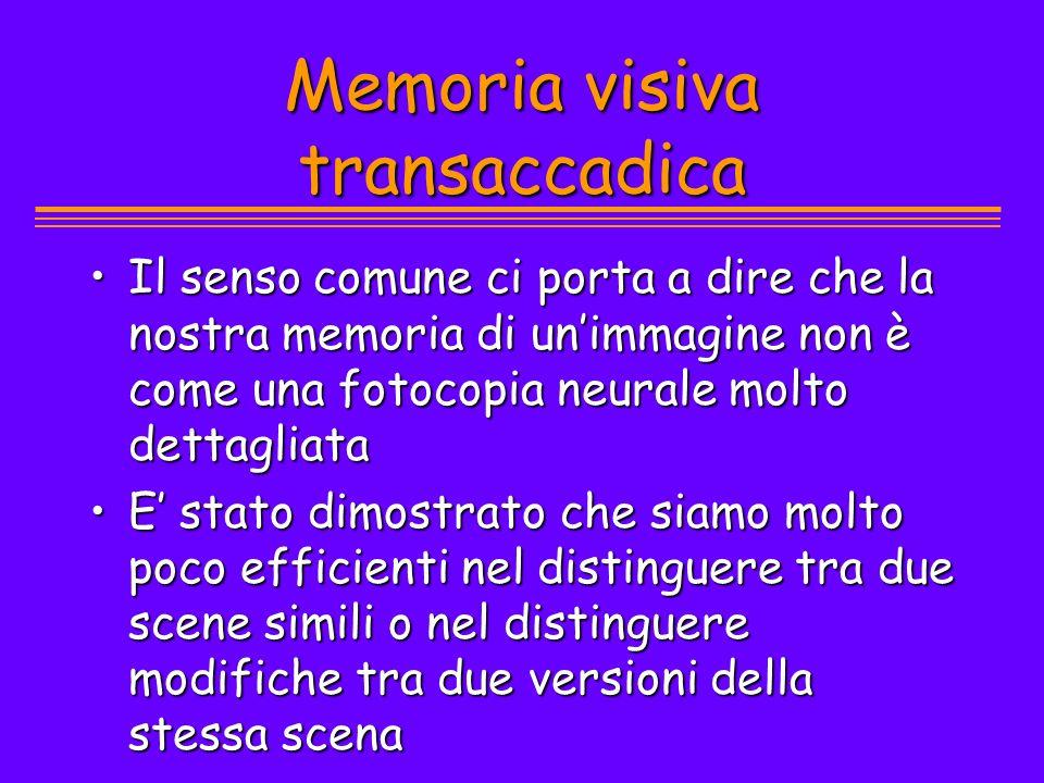Memoria visiva transaccadica Il senso comune ci porta a dire che la nostra memoria di unimmagine non è come una fotocopia neurale molto dettagliataIl