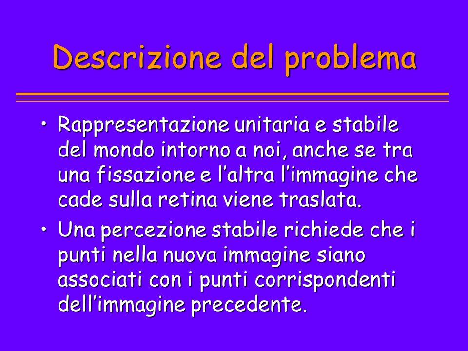 Descrizione del problema Rappresentazione unitaria e stabile del mondo intorno a noi, anche se tra una fissazione e laltra limmagine che cade sulla re