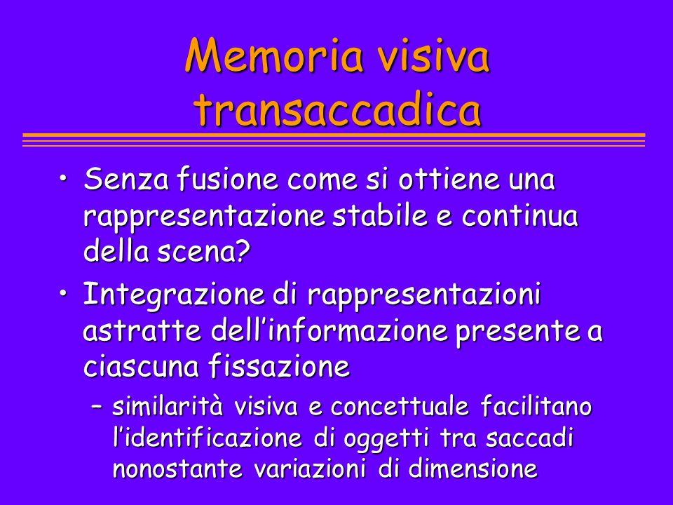 Memoria visiva transaccadica Senza fusione come si ottiene una rappresentazione stabile e continua della scena?Senza fusione come si ottiene una rappr