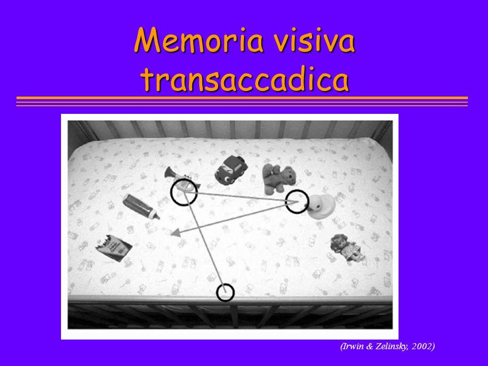 Memoria visiva transaccadica (Irwin & Zelinsky, 2002)