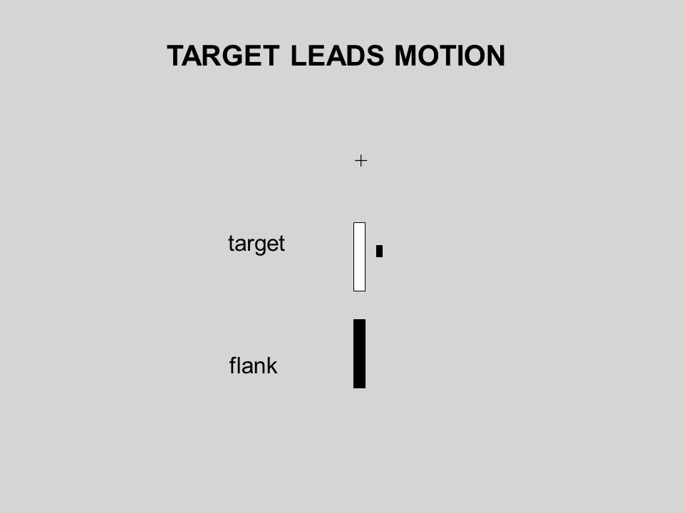 + target flank TARGET LEADS MOTION