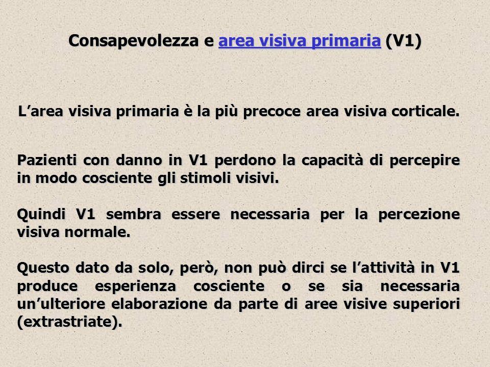Consapevolezza e area visiva primaria (V1) Larea visiva primaria è la più precoce area visiva corticale. Pazienti con danno in V1 perdono la capacità