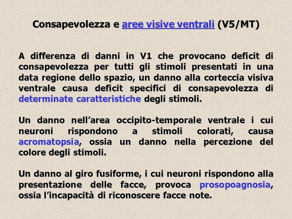 Consapevolezza e aree visive ventrali (V5/MT) A differenza di danni in V1 che provocano deficit di consapevolezza per tutti gli stimoli presentati in