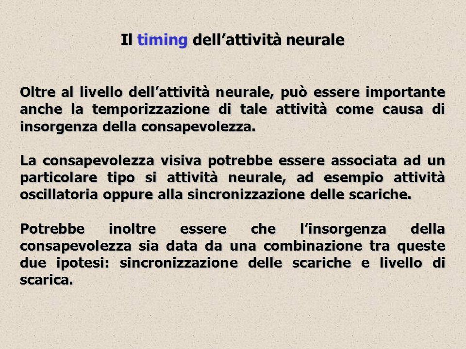 Il timing dellattività neurale Oltre al livello dellattività neurale, può essere importante anche la temporizzazione di tale attività come causa di in