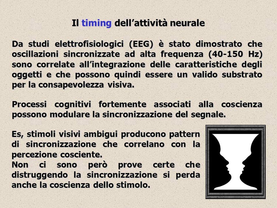 Il timing dellattività neurale Da studi elettrofisiologici (EEG) è stato dimostrato che oscillazioni sincronizzate ad alta frequenza (40-150 Hz) sono