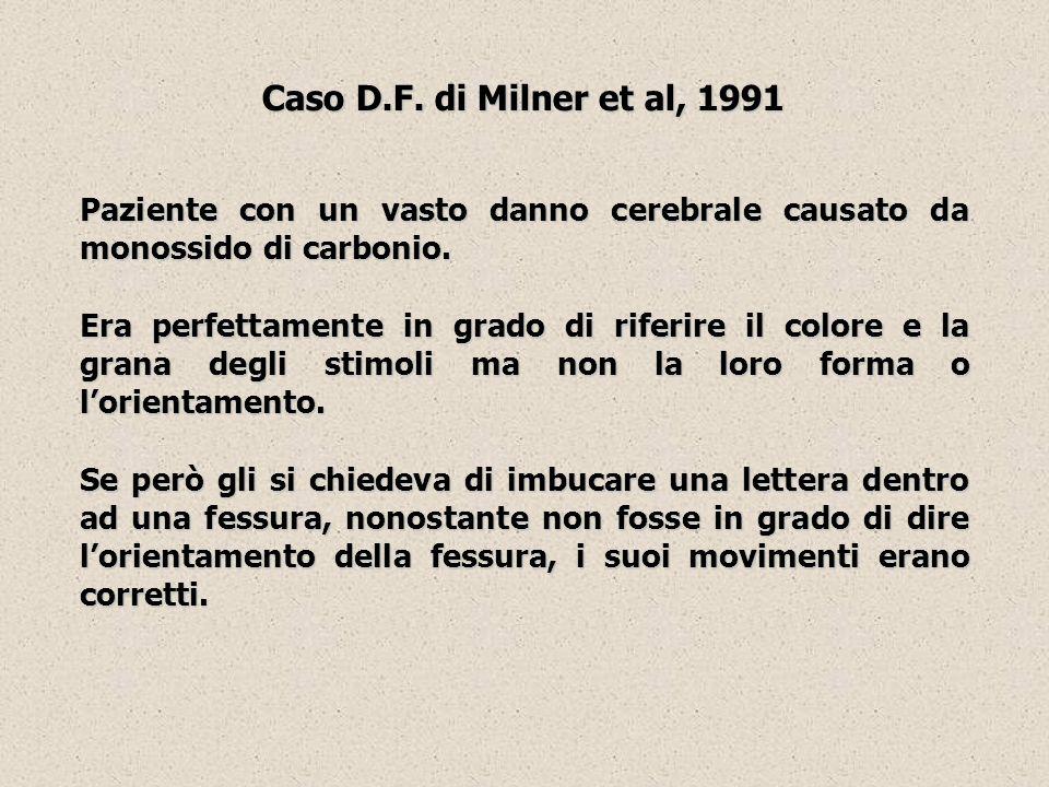 Caso D.F. di Milner et al, 1991 Paziente con un vasto danno cerebrale causato da monossido di carbonio. Era perfettamente in grado di riferire il colo