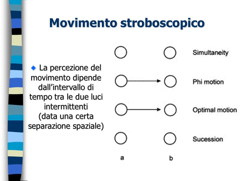 La percezione del movimento dipende dallintervallo di tempo tra le due luci intermittenti (data una certa separazione spaziale) La percezione del movi