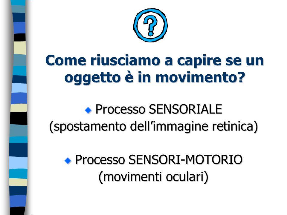 Come riusciamo a capire se un oggetto è in movimento? Processo SENSORIALE (spostamento dellimmagine retinica) Processo SENSORI-MOTORIO (movimenti ocul