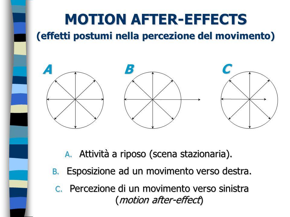 (effetti postumi nella percezione del movimento) A. Attività a riposo (scena stazionaria). B. Esposizione ad un movimento verso destra. C. Percezione