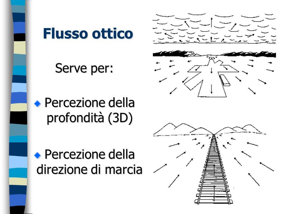 Flusso ottico Serve per: Percezione della profondità (3D) Percezione della direzione di marcia