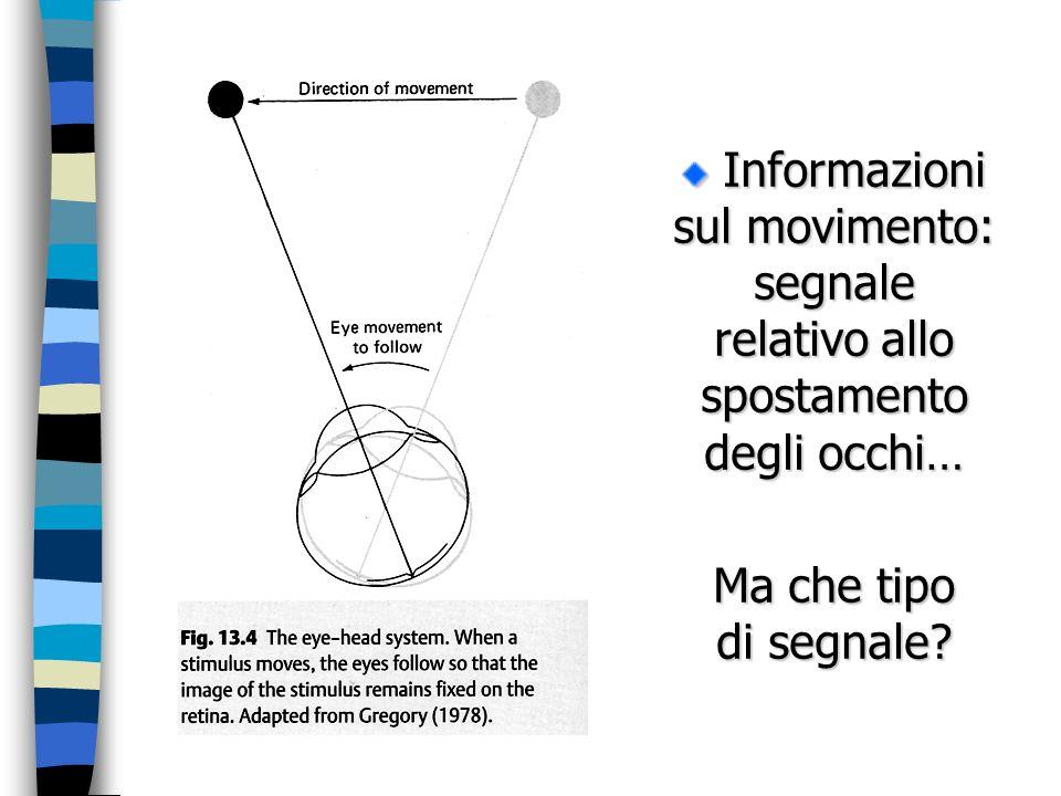 Informazioni sul movimento: segnale relativo allo spostamento degli occhi… Informazioni sul movimento: segnale relativo allo spostamento degli occhi…