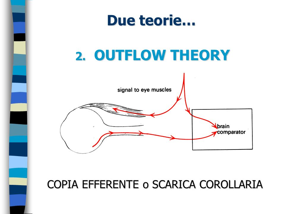 Due teorie… 2. OUTFLOW THEORY COPIA EFFERENTE o SCARICA COROLLARIA