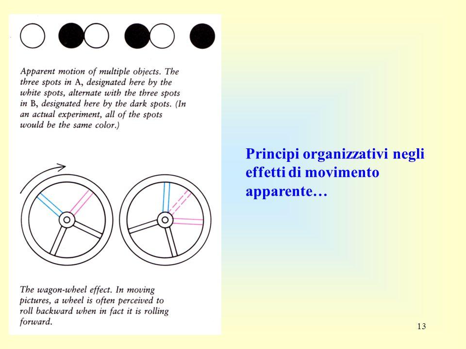 13 Principi organizzativi negli effetti di movimento apparente…