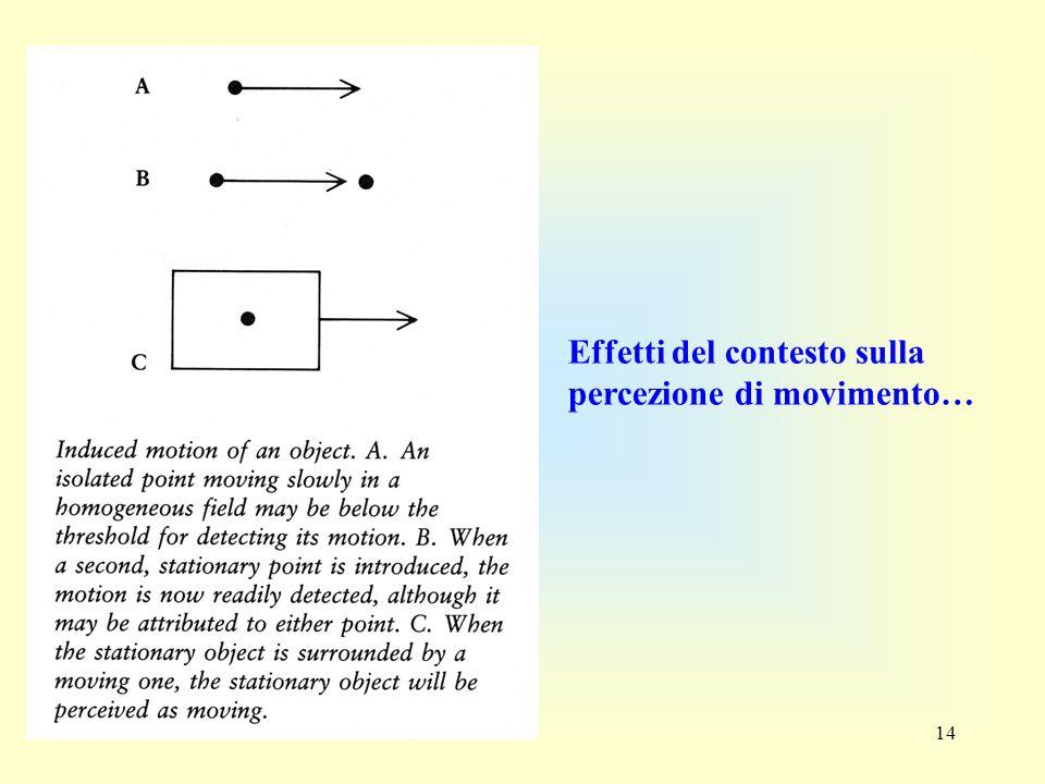 14 Effetti del contesto sulla percezione di movimento…