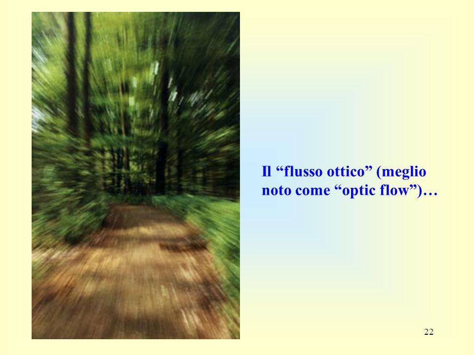 22 Il flusso ottico (meglio noto come optic flow)…