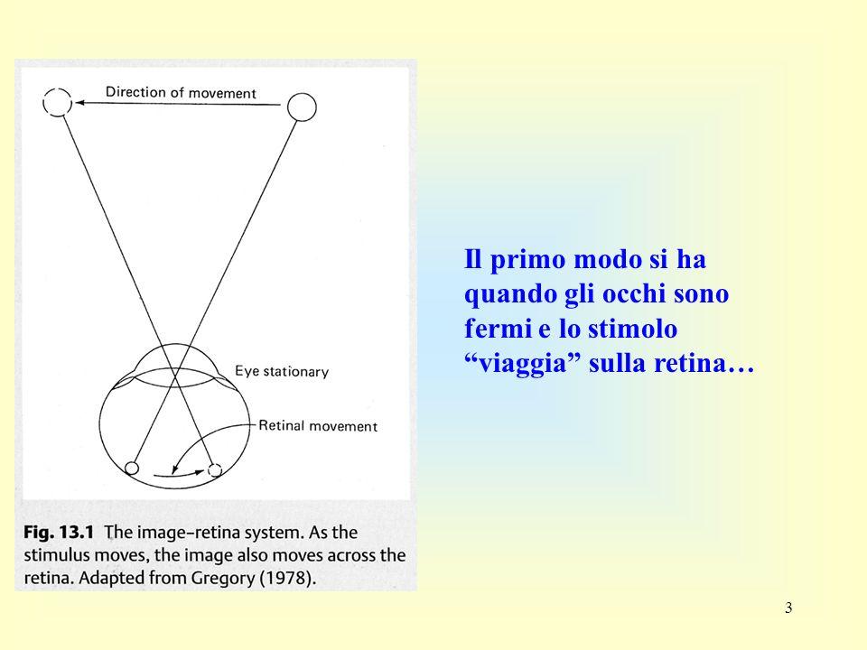4 Il secondo si ha quando gli occhi inseguono uno stimolo in movimento… In questo caso non vi e alcun movimento dello stimolo sulla retina…