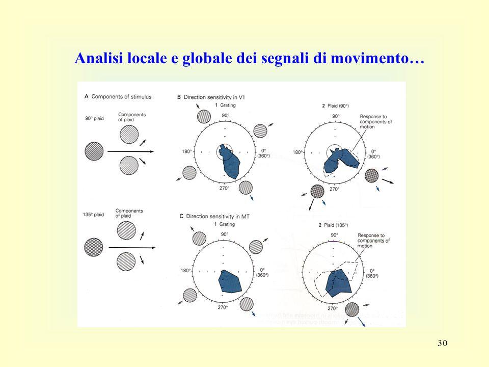 30 Analisi locale e globale dei segnali di movimento…