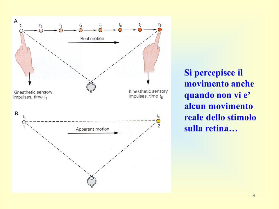9 Si percepisce il movimento anche quando non vi e alcun movimento reale dello stimolo sulla retina…