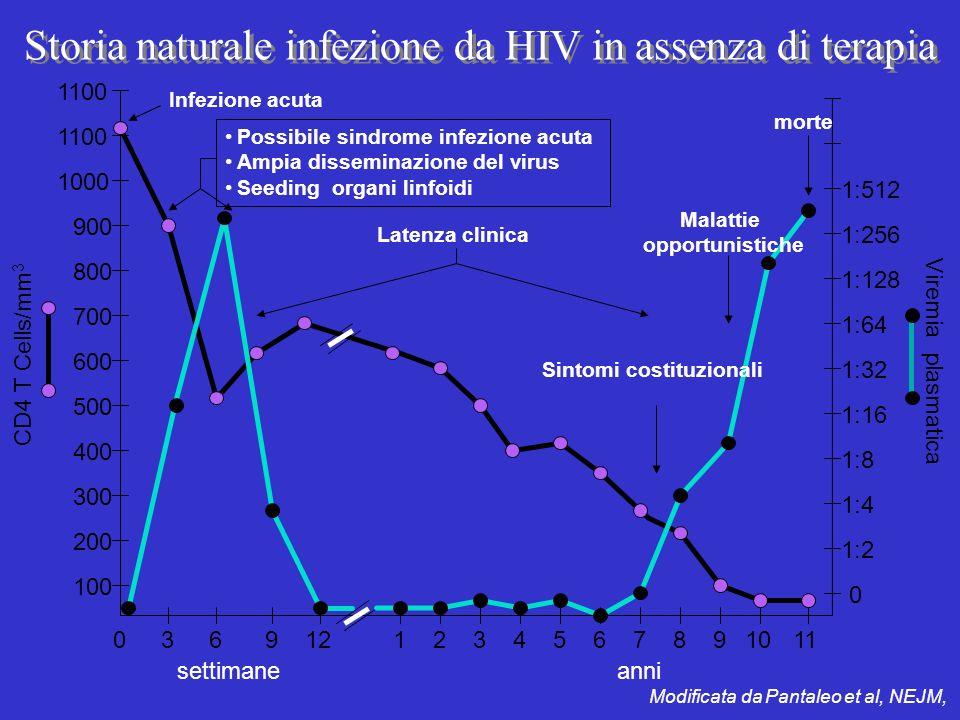 Storia naturale infezione da HIV in assenza di terapia Modificata da Pantaleo et al, NEJM, settimane CD4 T Cells/mm 3 Viremia plasmatica 036211110912