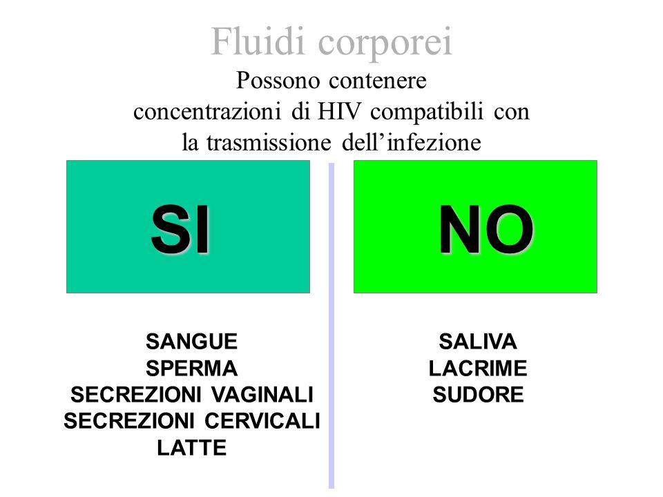 Fluidi corporei Possono contenere concentrazioni di HIV compatibili con la trasmissione dellinfezione SINO SANGUE SPERMA SECREZIONI VAGINALI SECREZION