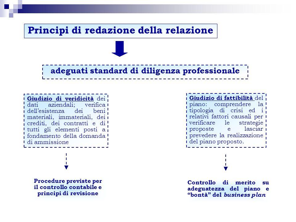 Principi di redazione della relazione adeguati standard di diligenza professionale Procedure previste per il controllo contabile e principi di revisio