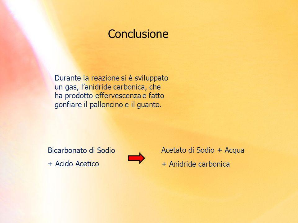 Conclusione Durante la reazione si è sviluppato un gas, lanidride carbonica, che ha prodotto effervescenza e fatto gonfiare il palloncino e il guanto.