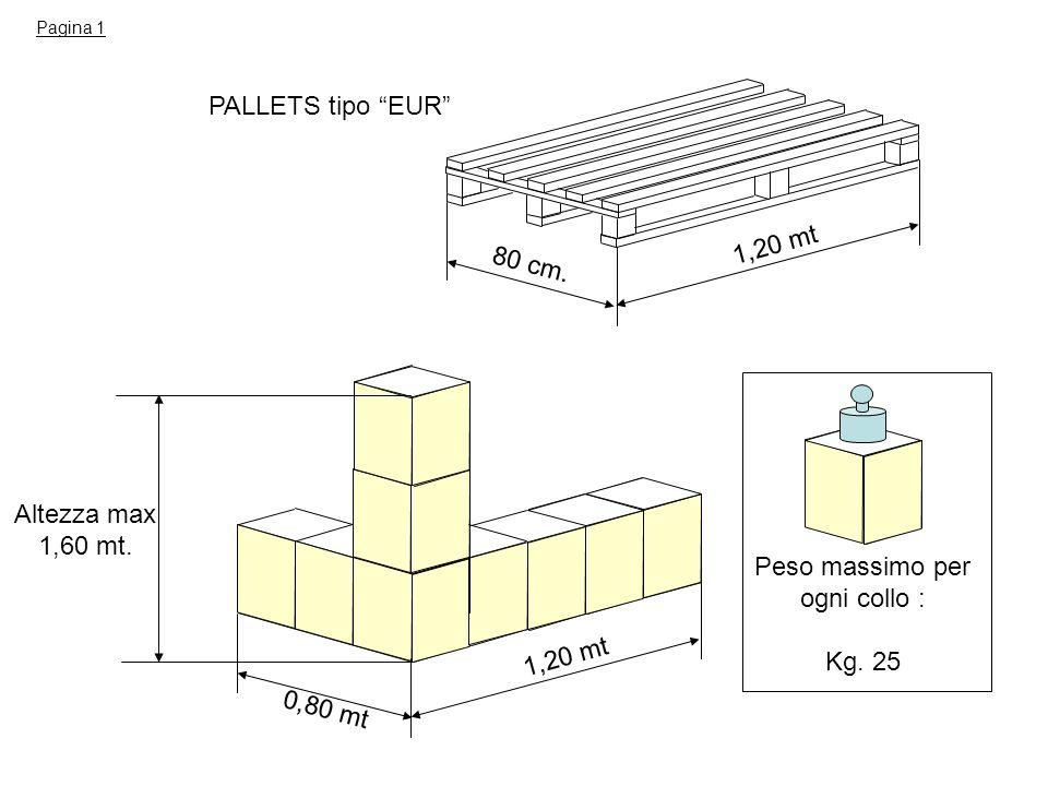 PALLETS tipo EUR 80 cm. 1,20 mt 0,80 mt 1,20 mt Altezza max 1,60 mt. Peso massimo per ogni collo : Kg. 25 Pagina 1