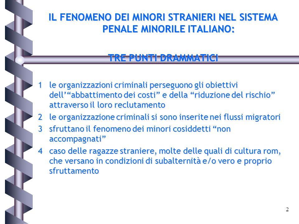 IL FENOMENO DEI MINORI STRANIERI NEL SISTEMA PENALE MINORILE ITALIANO: TRE PUNTI DRAMMATICI 1le organizzazioni criminali perseguono gli obiettivi dell