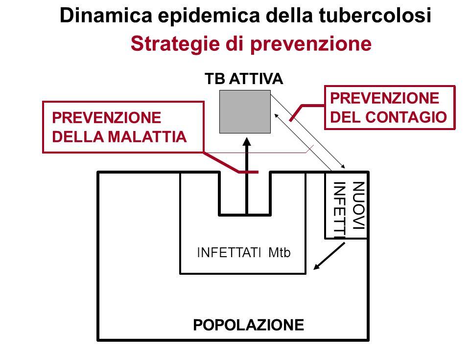 POPOLAZIONE INFETTATI Mtb NUOVI INFETTI TB ATTIVA Dinamica epidemica della tubercolosi Strategie di prevenzione PREVENZIONE DEL CONTAGIO PREVENZIONE D