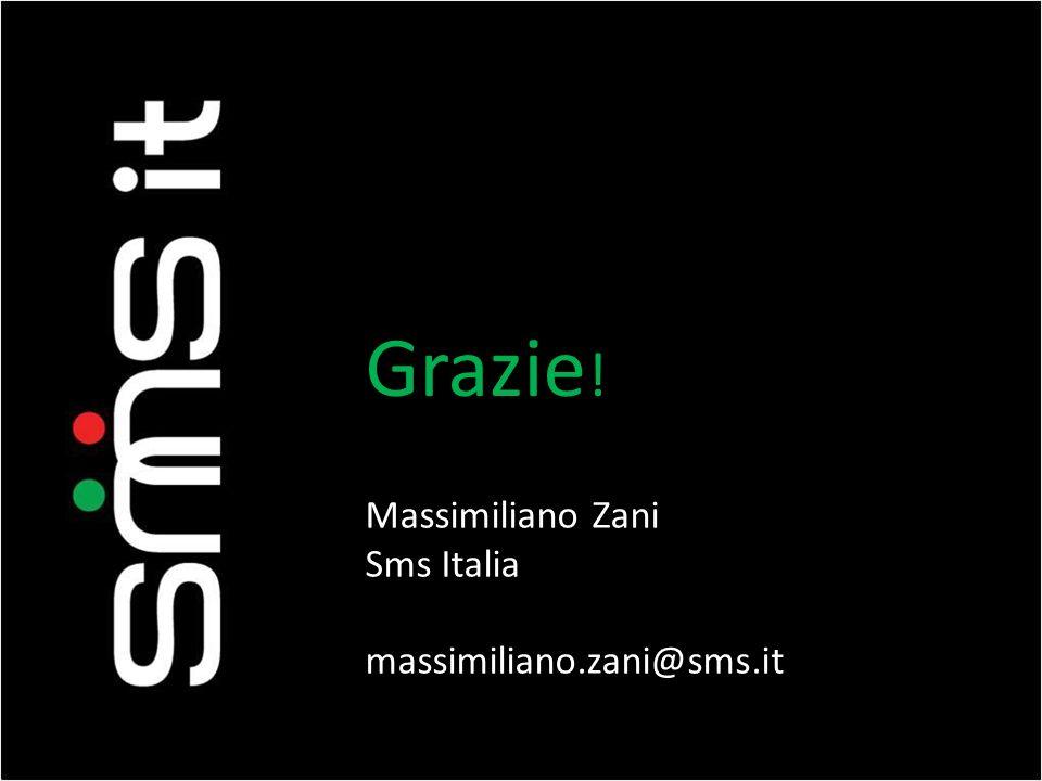 Grazie ! Massimiliano Zani Sms Italia massimiliano.zani@sms.it