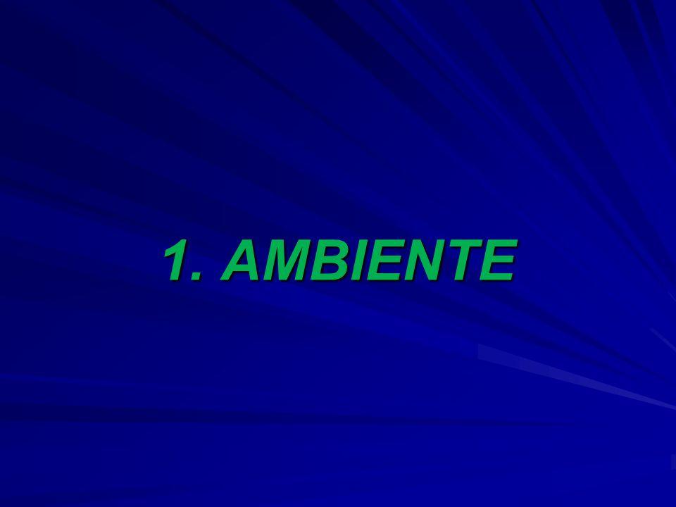 1. AMBIENTE